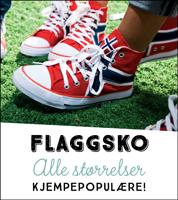 Flaggsko